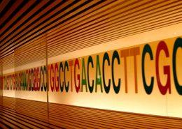 Como o seu sequenciamento pode ajudar a ciência - Tismoo