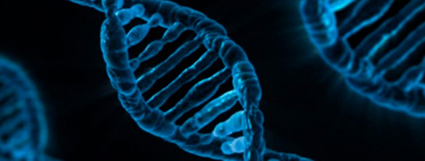Mapeamento genético pode ser uma das ferramentas mais importantes no diagnóstico do autismo, afirmam cientistas - Tismoo