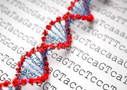 sequenciamento de genoma - DNA - Tismoo