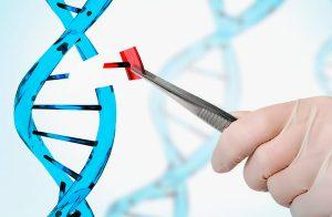 Edição genética de bebês na China usando Crispr-cas9 - cientistas da Tismoo se posicionam
