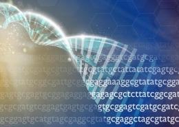 Estudo reforça importância do sequenciamento do genoma completo em autistas — Tismoo